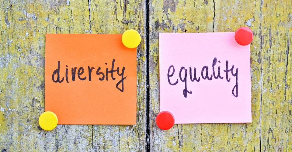 Diversity and equality notes